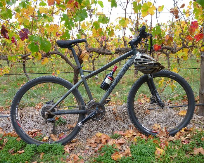 Adelaide Wine Cycling Tour
